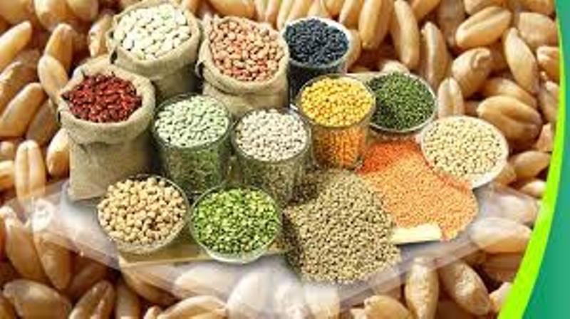 Quality_seeds