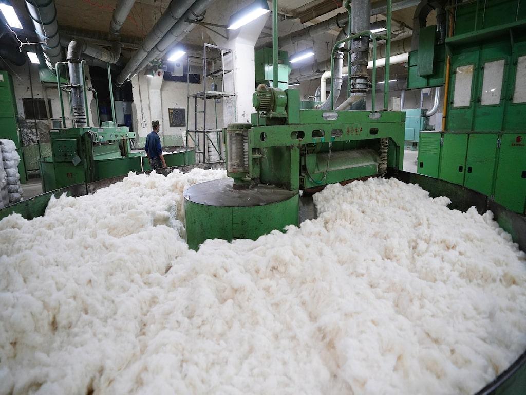 cotton-production